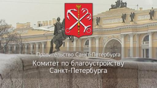 Ответ первого заместителя председателя Комитета по благоустройству САНКТ-ПЕТЕРБУРГА Орлова С.Н.